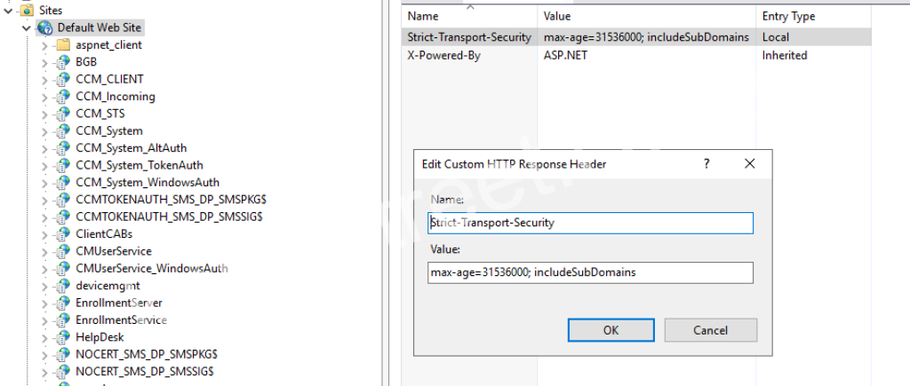 Setting the Strict-Transport-Security header in IIS 10.0 on Windows Server 2016